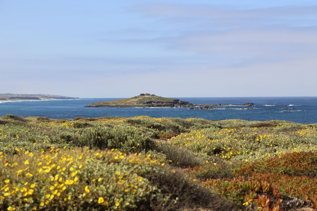 Schöne Ausblicke sind auf dem Küstenweg der Rota Vicentina garantiert
