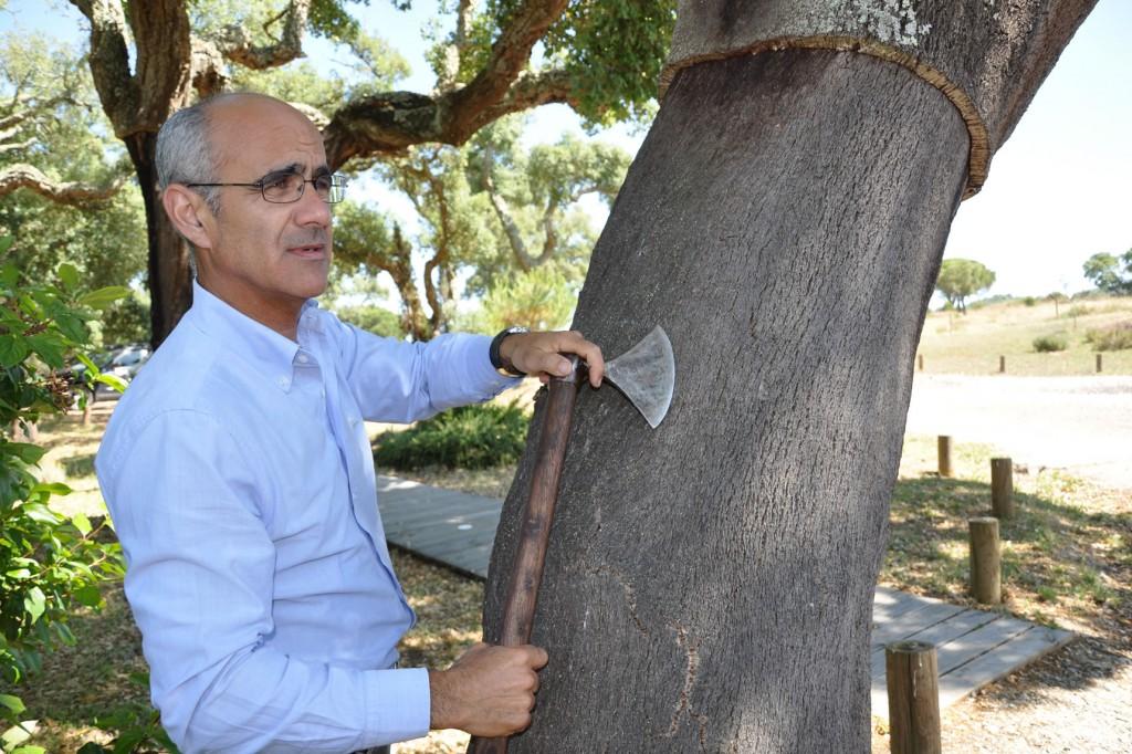 Luis Dias erklärt den aufwendigen Prozess des Korkeichen-Schälens