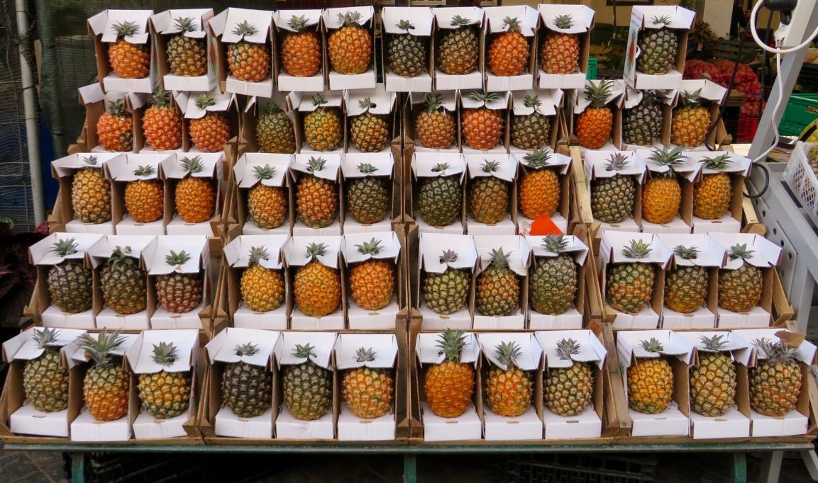 Ananas Verpackung Azoren Portugal