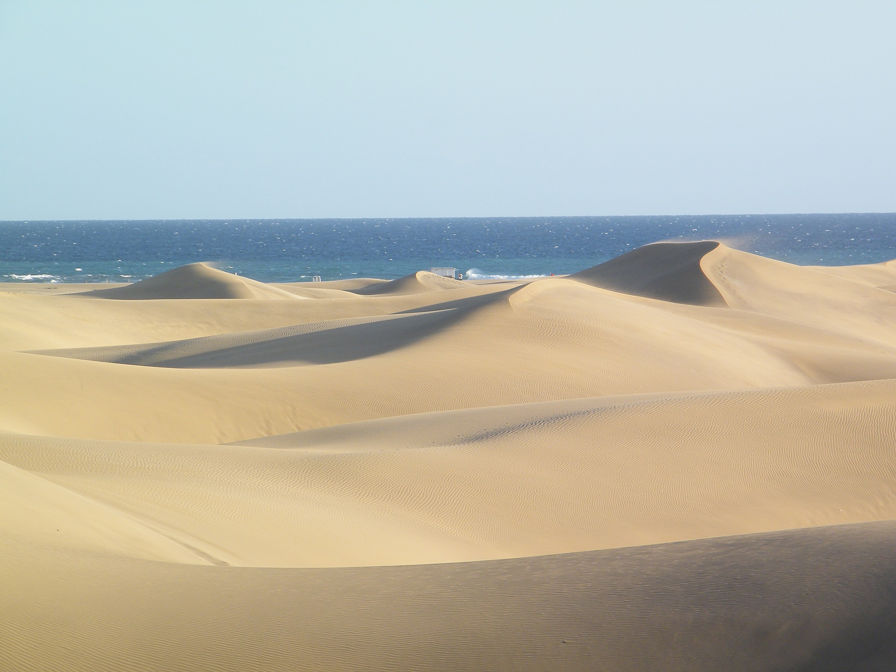 Wind fegt über die Maspalomas Dünen auf Gran Canaria