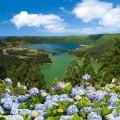 Sete Cidades auf den Azoren Blumen und See