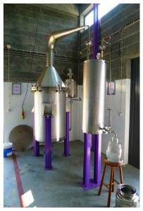 Quinta das Lavadas Destillerie