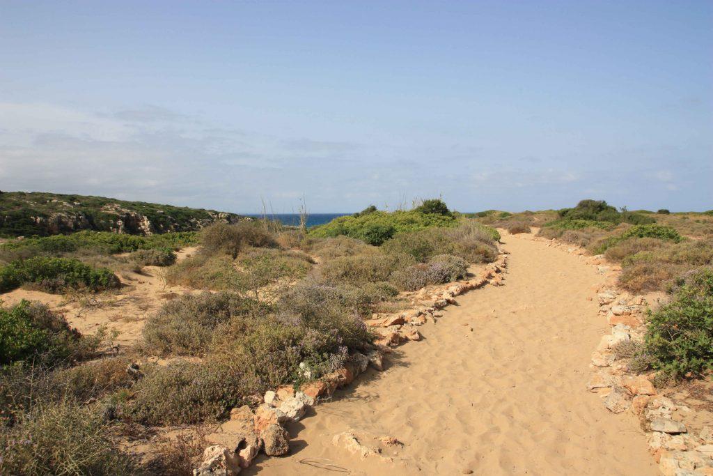 Sandiger Weg zur Cala Mosche