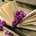 Buch Flieder romantische Bild