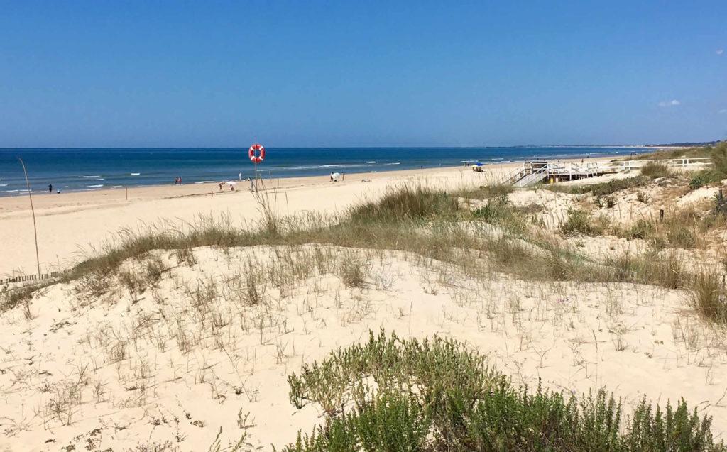 Dünen und Strand Algarve
