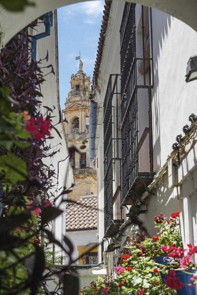 Calle das Flores Córdoba