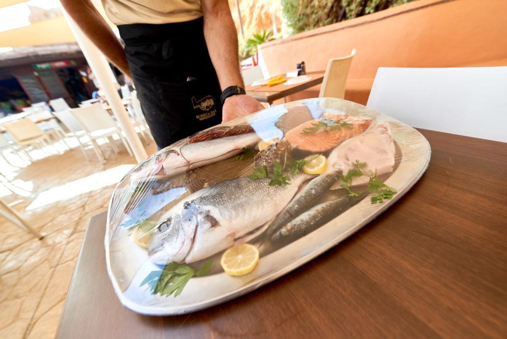 Fisch Teller Algarve
