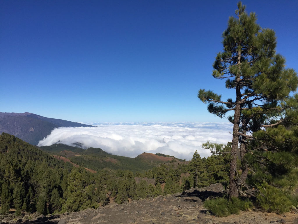 Woken Ostseite La Palma
