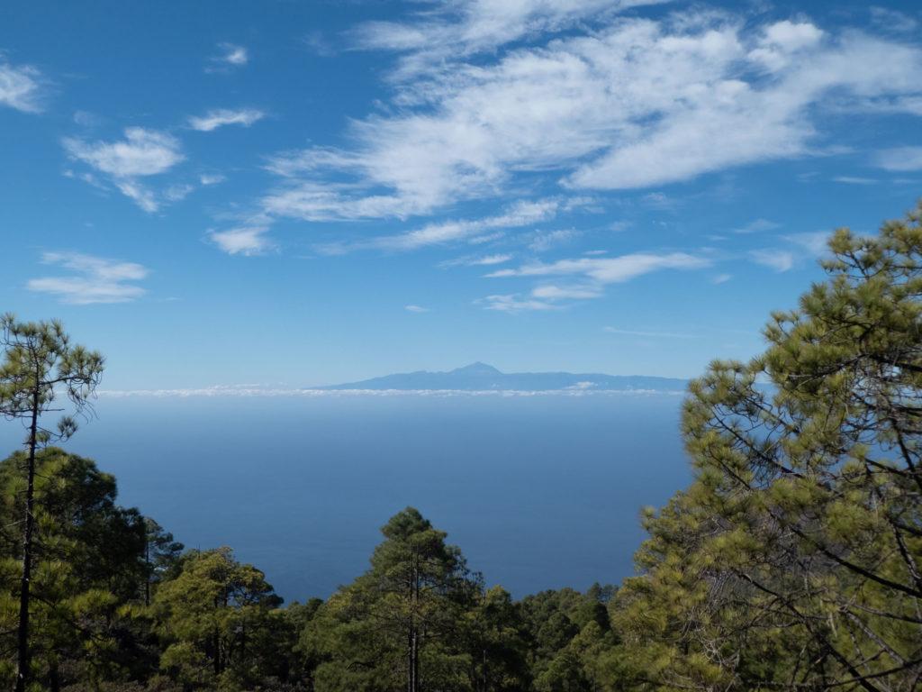 Blick auf Teide Naturpark Tamadaba