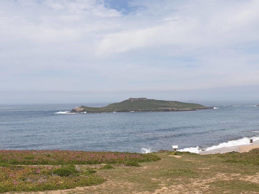Insel Ilha do Pessegueiro
