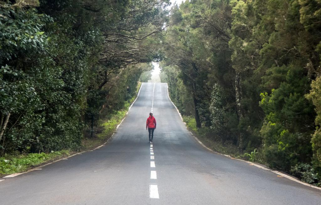 Straße La Gomera Garajonay