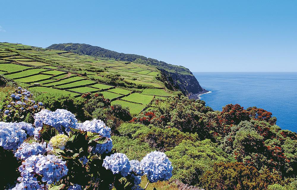 Terceira typische Landschaft