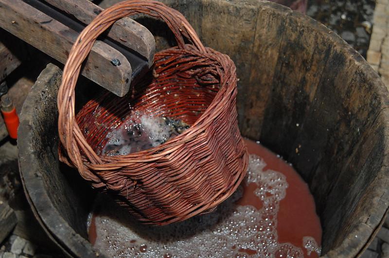 Trauben-Verarbeitung Madeirawein