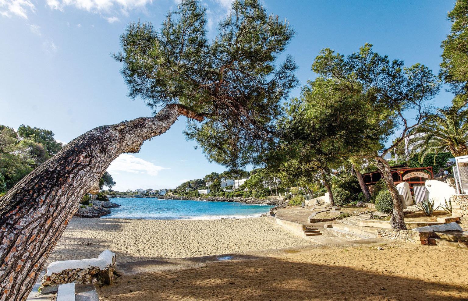 Mallorcaurlaub Cala d'Or