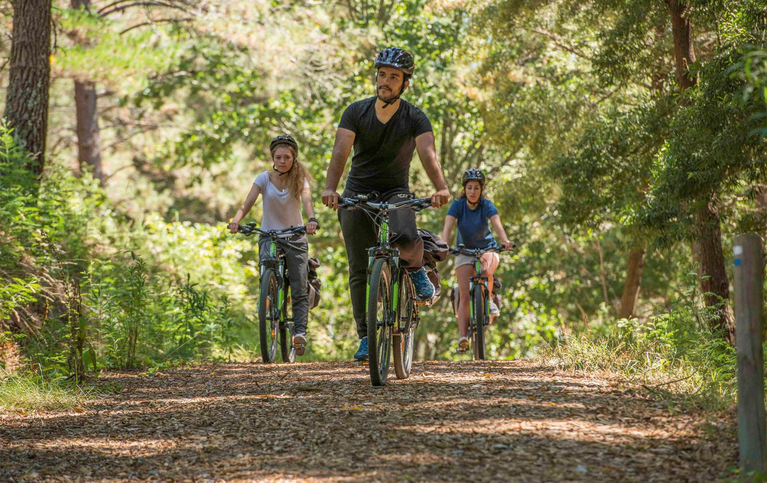 Radfahrer Natur